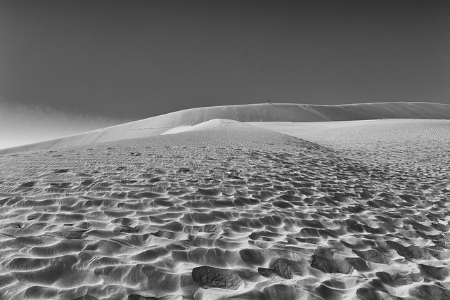 Little Man - Big Dune
