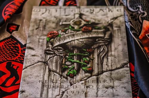 Whitesnake (27)