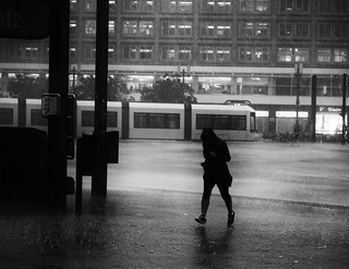 In the Rain | by kohlmann.sascha