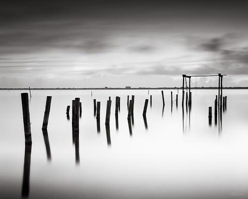 bw film sunrise landscapes florida fineart 4x5 largeformat palmbay 2014 acros100 floridaeastcoast ebonysv45ti jaspcphotography
