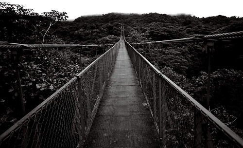 Hanging Bridges BW | by jyuen1314