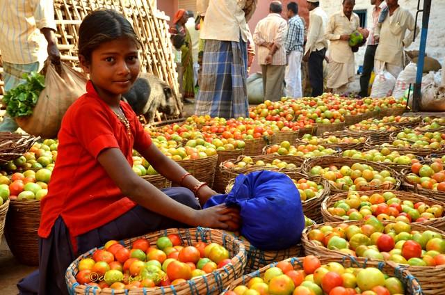 Tomatoes.  Badami