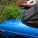 1980 Blue MG B