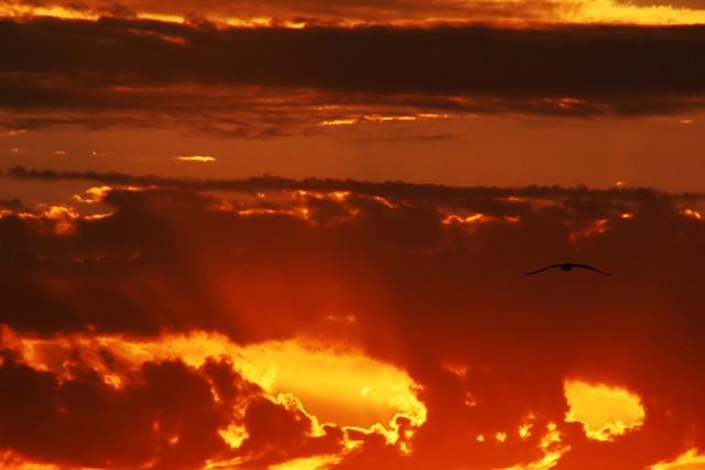 pôr-do-sol do Guaíba