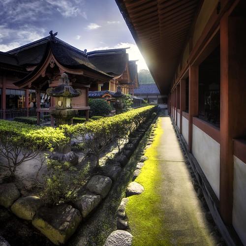 japan sunrise matsuyama isaniwashrine
