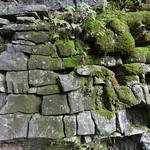 Mossy bricks, Bruce's Caves