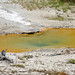 PEANOT (unnamed hot spring pool since winter 2012-2013, Fountain Group, Lower Geyser Basin, Yellowstone Hotspot Volcano, nw Wyoming, USA)