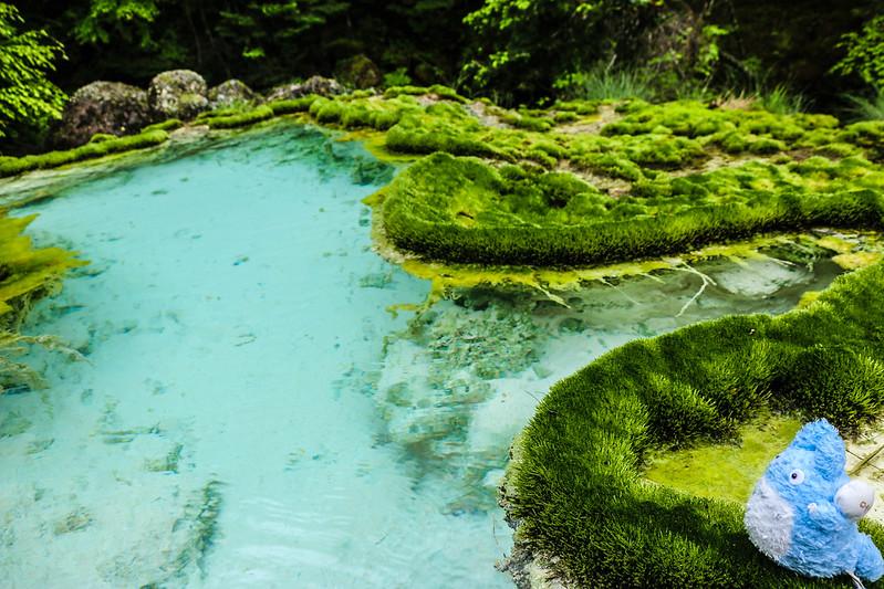唐沢鉱泉の源泉