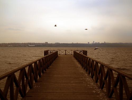light shadow sea sky seagulls lake lines animal silhouette landscape pier long shadows angle line