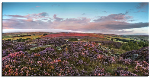 heather earlymorning haworth 2014 d600
