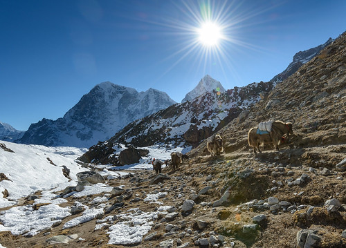 Going back from Everest Base Camp | by valcker