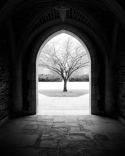 Arch framing tree