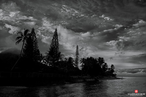 sky bw beach monochrome clouds sunrise reflections landscape island hawaii blackwhite sony scenic silhouettes maui palmtrees pacificocean tropical fullframe fx lahaina breakwall nationalgeographic waterscape lahainaharbor a7r 505frontstreet sonya7r sonyilce7r zeissfe35mmf28za