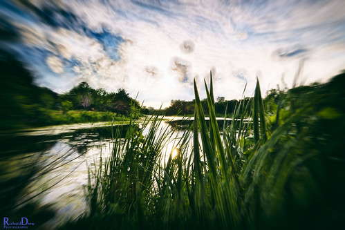 blue trees sunset sun reflection wet water clouds reeds dark illinois dusk toycamera il nik atx redfield paloshills lakekathering