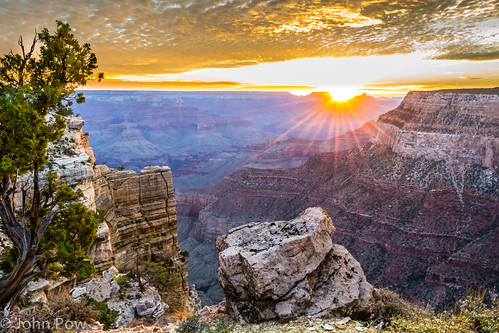 arizona tree sunrise rocks unitedstates grand canyon grandcanyonvillage