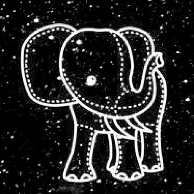 Elephant Love Wallpaper Life School Lockscreen Bore