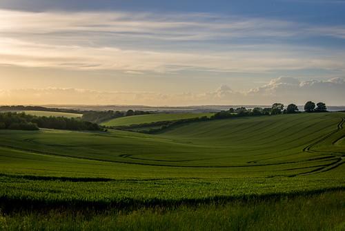 uk greatbritain sunset england landscape nikon fav50 unitedkingdom gb berkshire d800 combe fav10 fav25 combegibbet nikond800