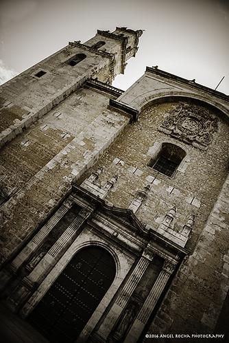 Catedral de San Ildefonso IV