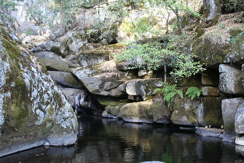 california travel nature water creek landscape rocks hiking sierra nationalforest