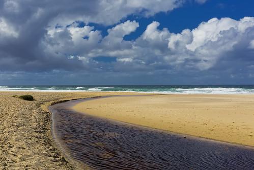 Tannin Run-Off Sunshine Beach | by bidkev1 and son (see profile)