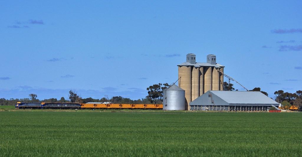 EL53 S300 and S311 make good progress as they power past Dooen silos by bukk05