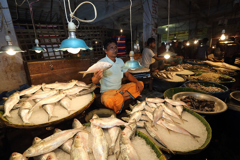 Local fish market in Khulna, Bangladesh. Photo by M. Yousuf Tushar. April 17, 2014
