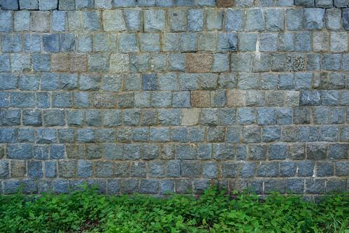 wall | by tablexxnx