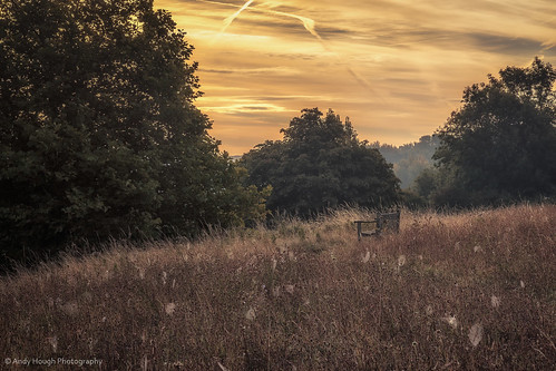 trees england sunrise bench landscape golden view unitedkingdom sony a77 littlewittenham sonyalpha andyhough slta77 sonyzeissdt1680 andyhoughphotography