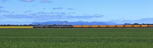 EL53 S300 and S311 pass their way through Spring crops at Dooen | by bukk05