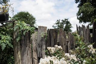 gathering from scratch retreat: old stone farm, VA | by Beth Kirby | {local milk}