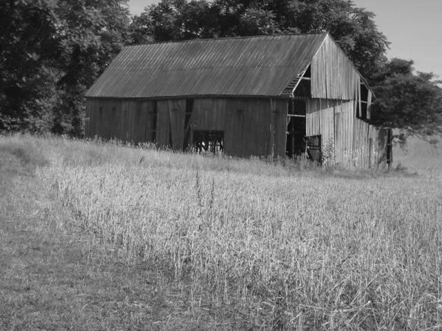 Abandoned Barn_Anne Arundel County MD