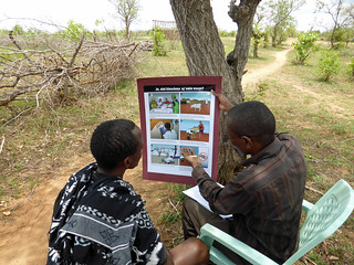 An enumerator uses a poster to obtain informed consent for research in Morogoro, Tanzania | by International Livestock Research Institute