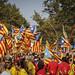 11_09_2014 Diada de Catalunya