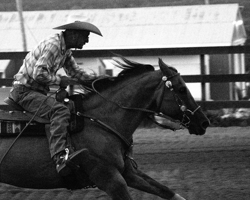 barrel racer4 | by bambe1964