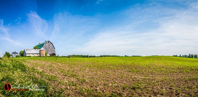 Vast Farmland