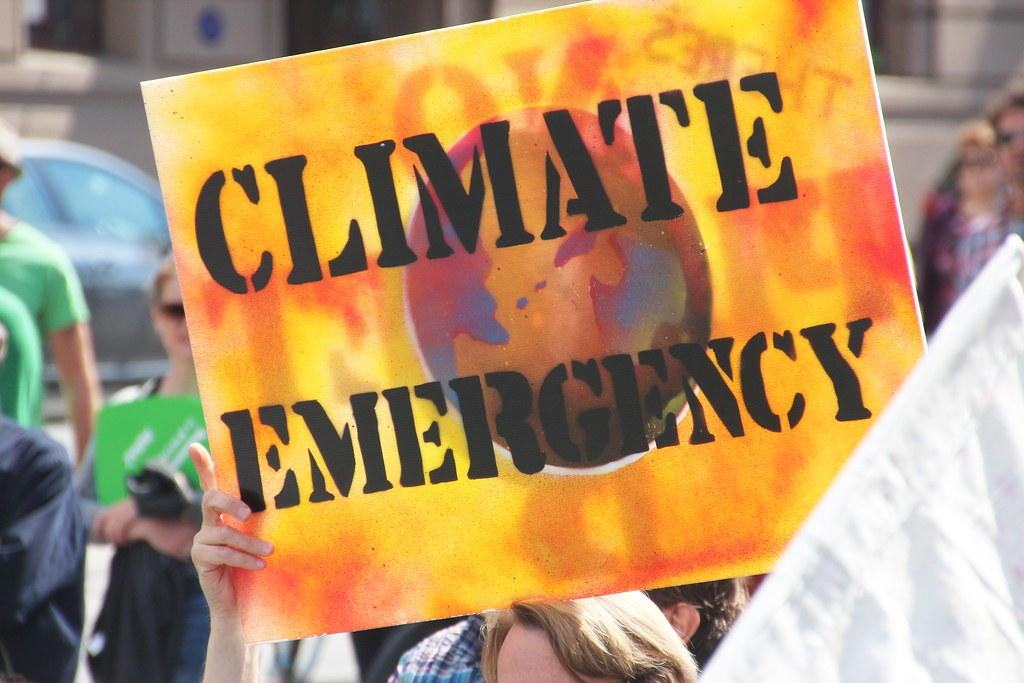 Image result for google images climate emergency