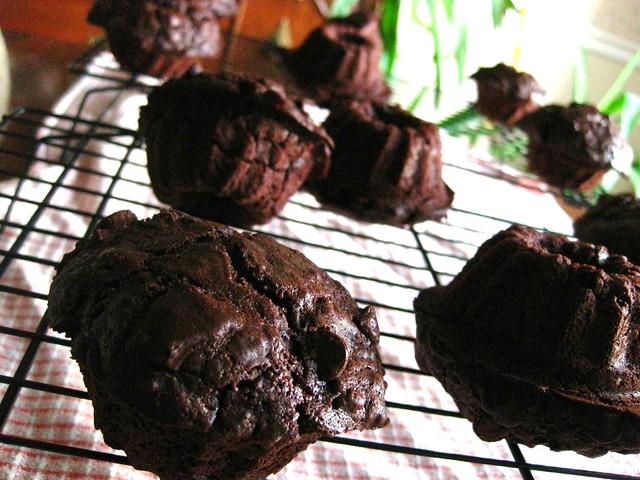 Double Chocolate Muffins // Mini Bundt Pans ftw
