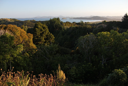travel newzealand landscape scenery view lookout northland viewpoint tutukaka