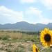 2014-07-22 Rocky Mountains