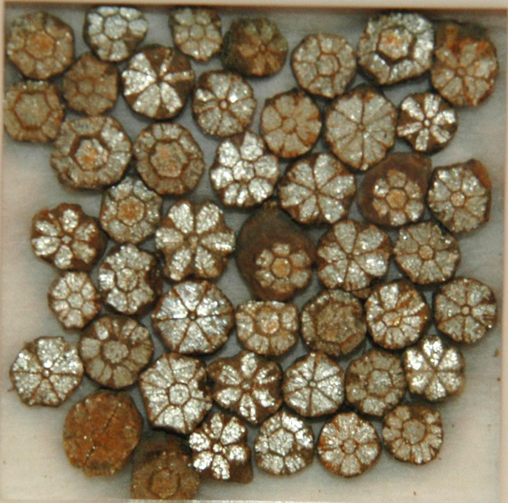 Cherry blossom stones (pinite) (muscovite mica replacing i