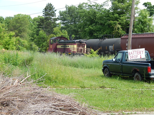 Prex 16 sneaking through the weeds