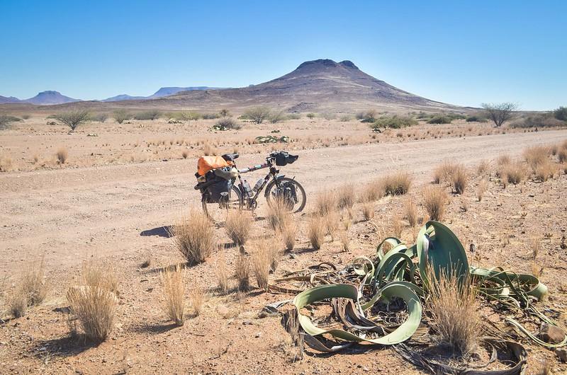 Day575-Bike-140601