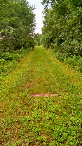 railroad newyorkcentralrailroad camdenny romewatertownogdensburg