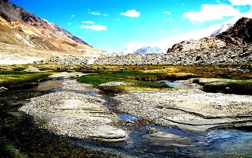 india mountain mountains landscape sheep shepherd altitude pashmina cashmere kashmir himalaya leh himalayas ladakh colddesert