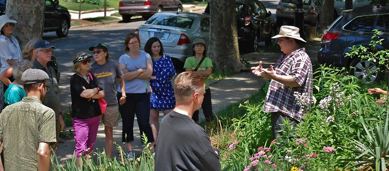 Me hosting the NYCWW Pollinator Week Safari in my Front Yard. Photo: Alan Riback