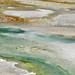 Pinwheel Geyser (Porcelain Basin, Norris Geyser Basin, Yellowstone Hotspot Volcano, nw Wyoming, USA)