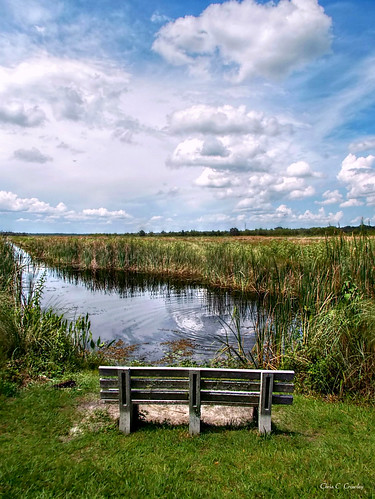 lwnwr deleonspringsflorida landscape scenic lake canal bench parkbench water reflection tallgrasses bluesky clouds benchatlakewoodruff