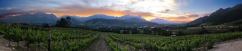 africa sunset mountains south vineyards stellenbosch winelands