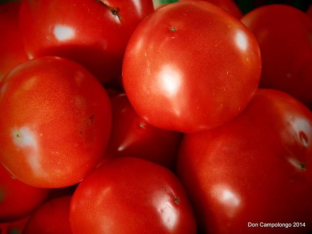 Tomatos - Schmidt's Berry Farm
