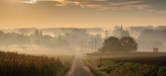Early morning Country Side